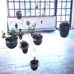 Group of Balanced-Earth plant mobiles