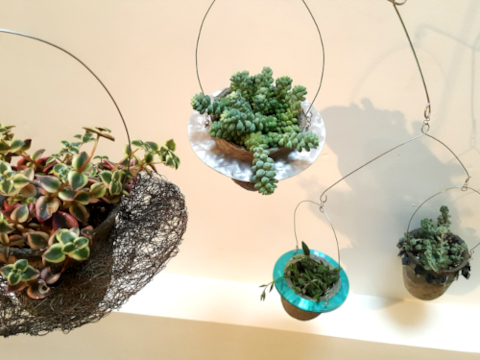 Four vessel plant mobiles with succulents in recycled materials frames