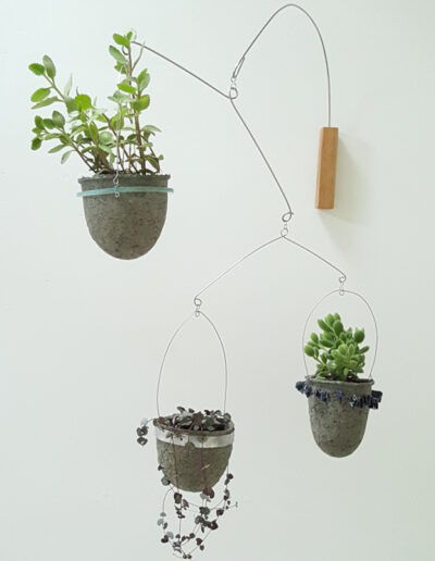 Succulents in three vessels plant mobile