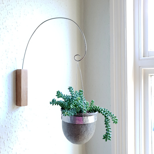 Single paperpulp vessel suspended from oak wall mount with succulent plant www.balanced-earth.co.uk