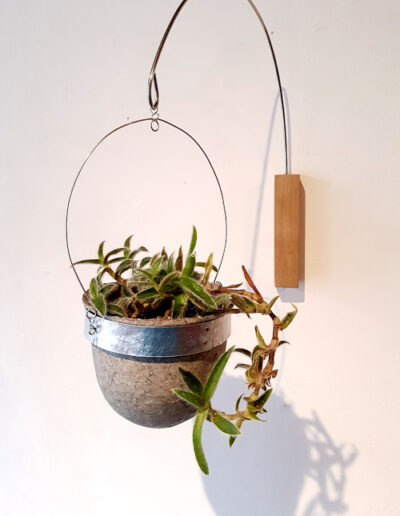 Oak wall-mounted paper pulp vessel with succulent plant