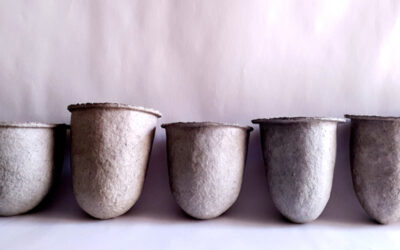 Why microporous paper pulp vessels?