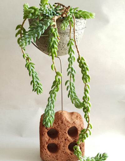 Planted paper pulp vessel held in stainless steel above sea sculpted brick