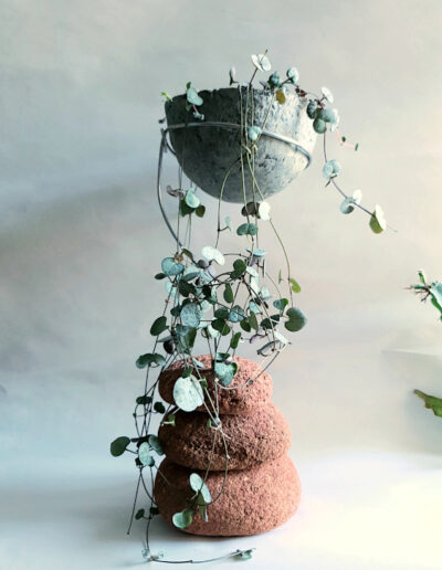 Planted paper pulp vessel with string of hearts succulent